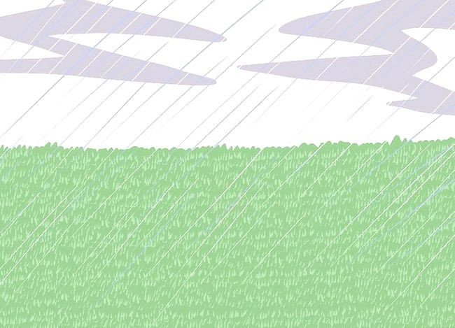 Titel afbeelding Save Water with a Sleeping Lawn Step 4