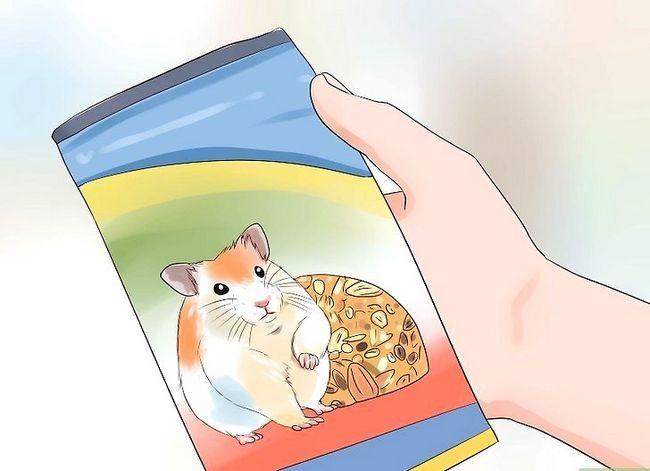 Titel afbeelding Feed Hamsters Step 1
