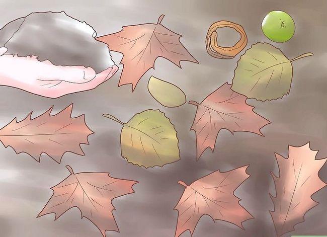 Titel afbeelding Encourage Earthworms Into Your Garden Stap 2