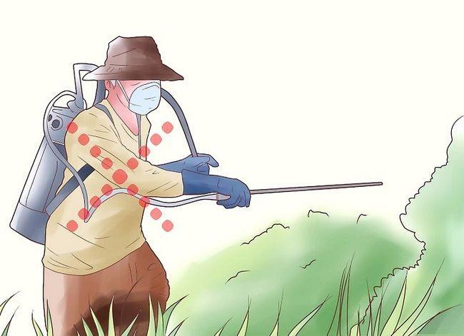 Titel afbeelding Encourage Earthworms Into Your Garden Stap 5