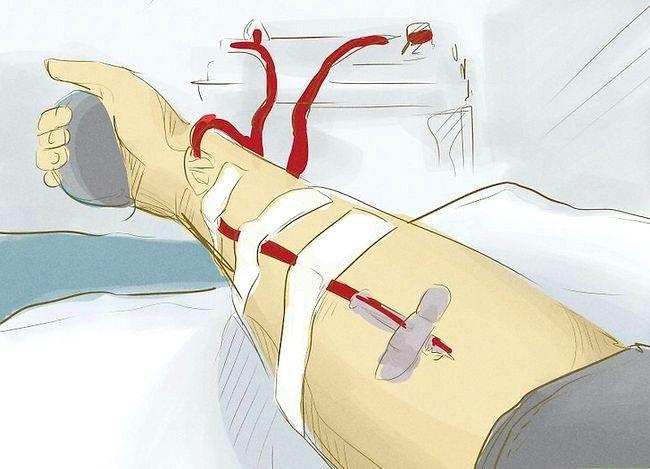 Titel afbeelding Increase Platelets Step 7