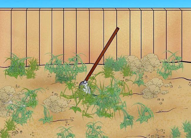 Titel afbeelding Lay a Turf Lawn Step 1Bullet1