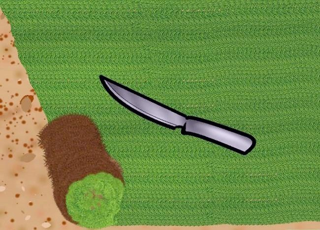 Titel afbeelding Lay a Turf Lawn Step 3Bullet2