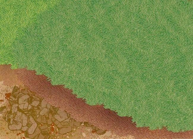 Titel afbeelding Lay a Turf Lawn Step 4