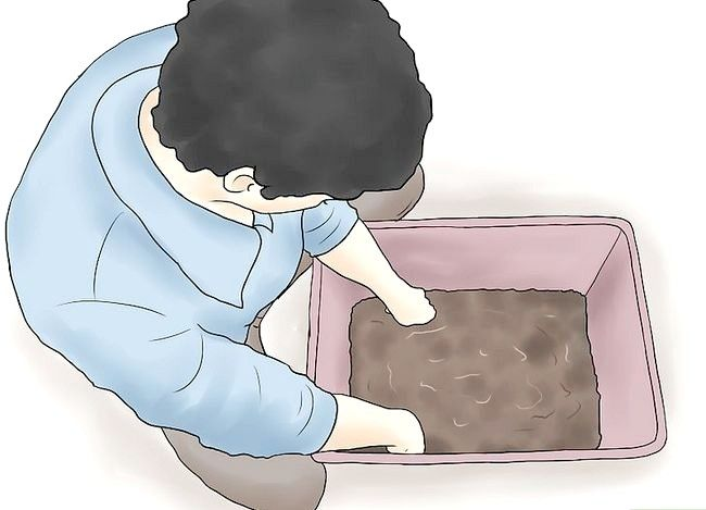 Titel afbeelding Start a Worm Farm for Profit Step 7