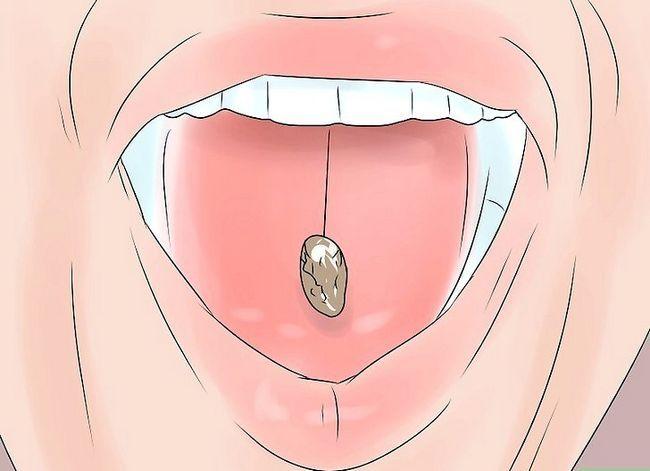 Titel afbeelding Eat Sunflower Seeds Step 6