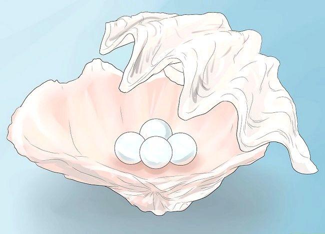 Titel afbeelding Buy Pearls Step 1