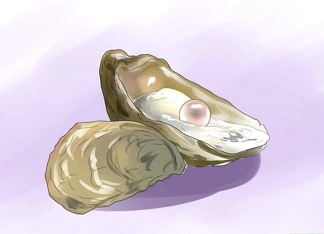 Titel afbeelding Buy Pearls Step 14