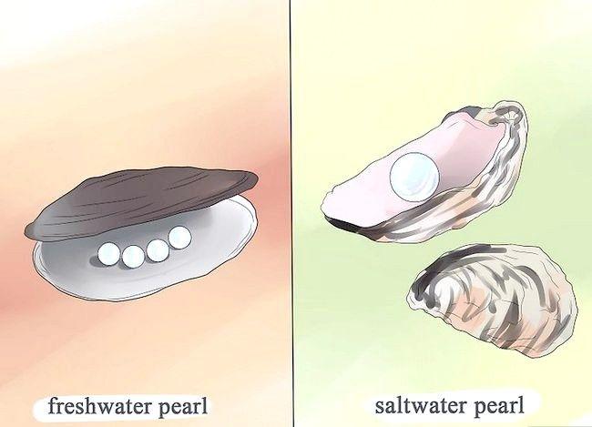 Titel afbeelding Buy Pearls Step 2