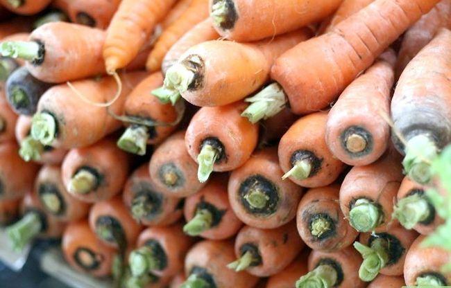 Titel afbeelding Make Sure Je geeft je cavia`s het juiste voedsel Stap 2
