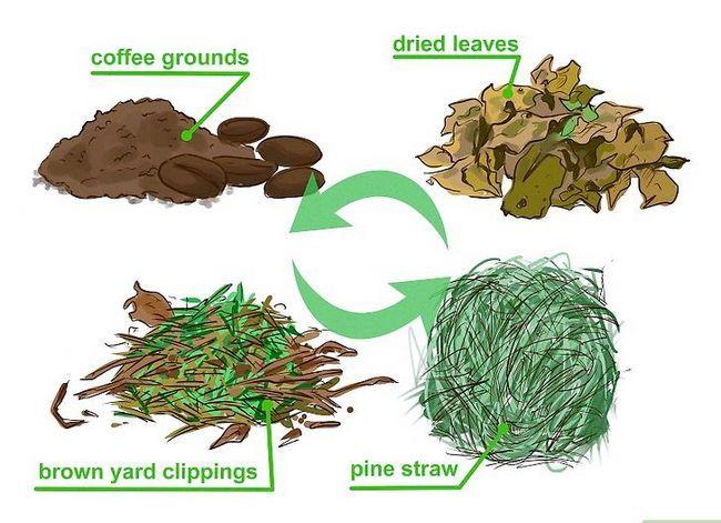 Titel afbeelding Make Fertilizer Step 11
