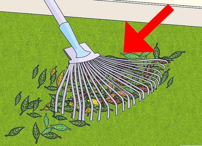 Titel afbeelding Mow a Lawn Step 3