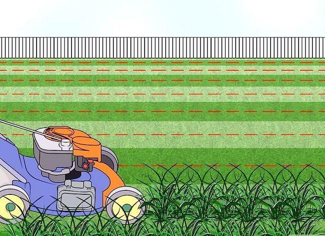 Titel afbeelding Mow a Lawn Step 6