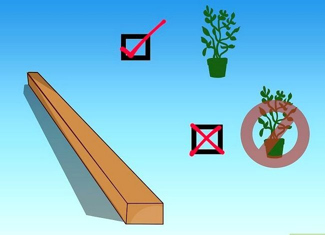 Titel afbeelding Create Natural Edging for a Garden Step 3Bullet1