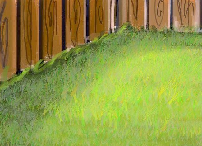Titel afbeelding Create a Weed Free Lawn Zonder schadelijke chemicaliën te gebruiken Stap 7