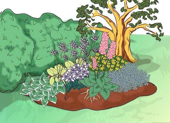 Titel afbeelding Make a Bog Garden Step 6Bullet6