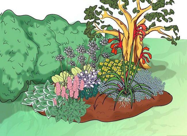 Titel afbeelding Make a Bog Garden Step 6Bullet7
