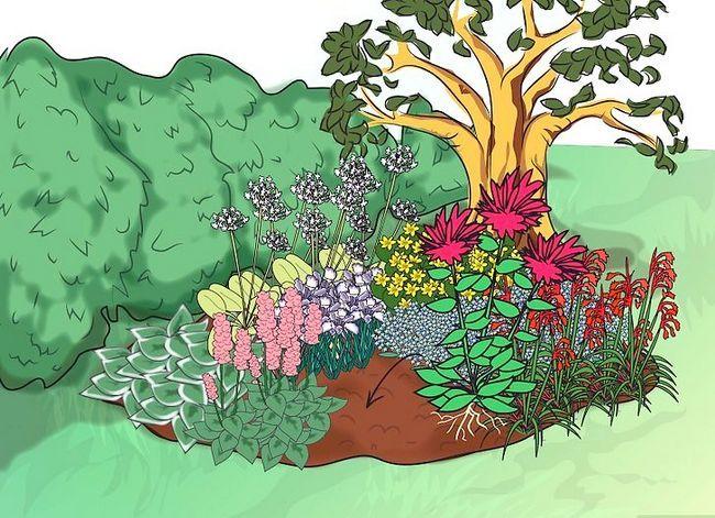 Titel afbeelding Make a Bog Garden Step 6Bullet8