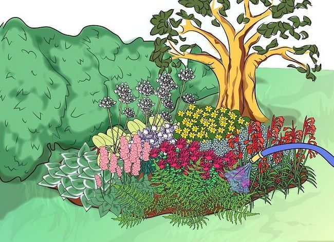 Titel afbeelding Make a Bog Garden Step 7