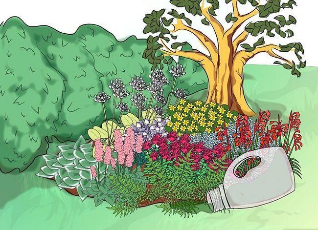 Titel afbeelding Make a Bog Garden Step 8