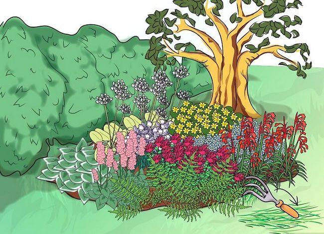 Titel afbeelding Make a Bog Garden Step 9