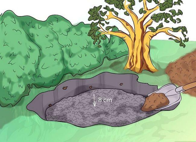 Titel afbeelding Make a Bog Garden Step 3