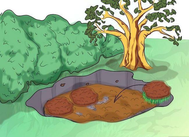 Titel afbeelding Make a Bog Garden Step 4