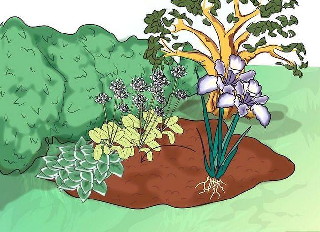 Titel afbeelding Make a Bog Garden Step 6Bullet3