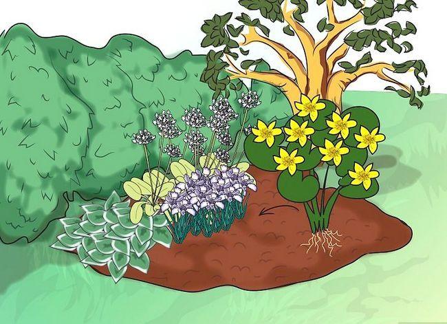 Titel afbeelding Make a Bog Garden Step 6Bullet4