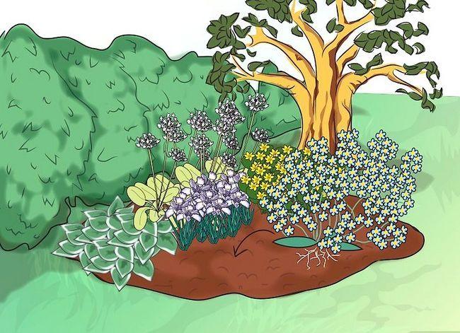 Titel afbeelding Make a Bog Garden Step 6Bullet5