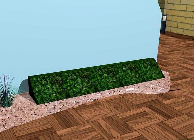 Titel afbeelding Create a Minimalist Garden Step 9