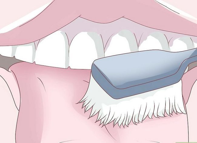 Titel afbeelding Care for Your Dentures Step 13