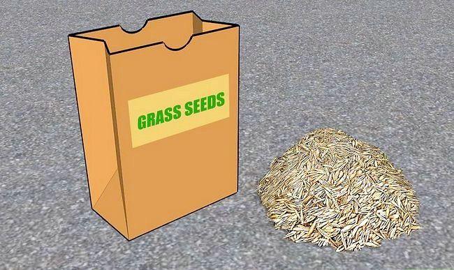 Titel afbeelding Grow Grass Step 3