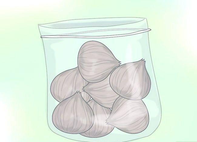 Hoe gladiolen te cultiveren
