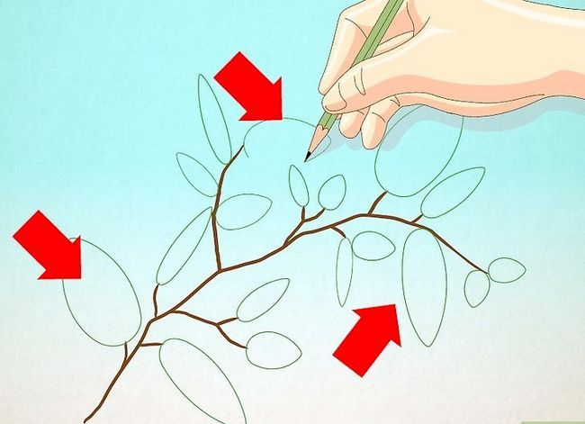 Afbeelding met de titel Draw Leaves Step 12