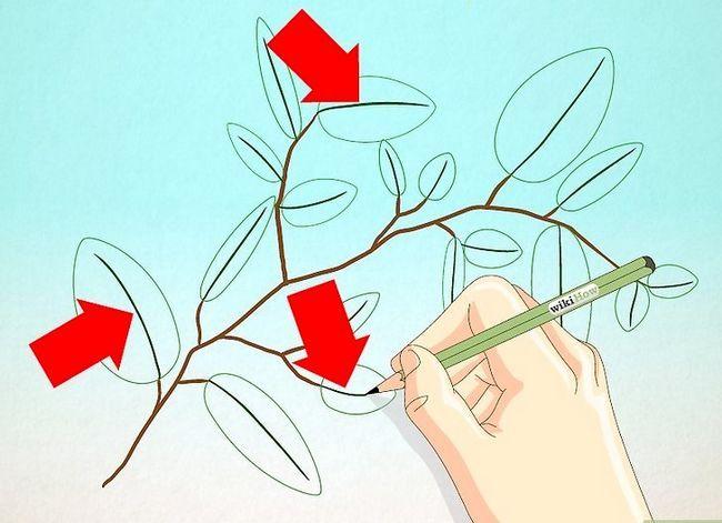 Afbeelding met titel Draw Leaves Step 13