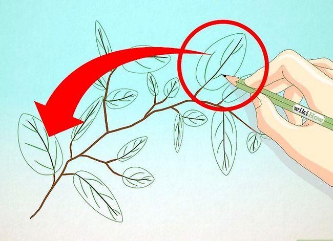 Afbeelding met de titel Draw Leaves Step 14