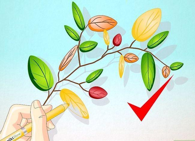 Afbeelding met de titel Draw Leaves Step 15