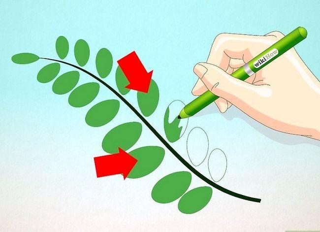 Afbeelding met de titel Draw Leaves Step 5