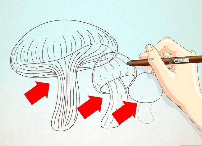 Titel afbeelding Draw Mushrooms Step 5