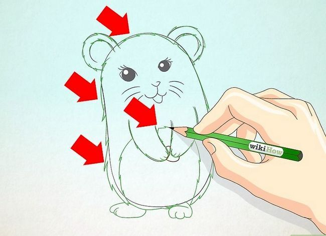 Titel afbeelding Draw a Hamster Step 14