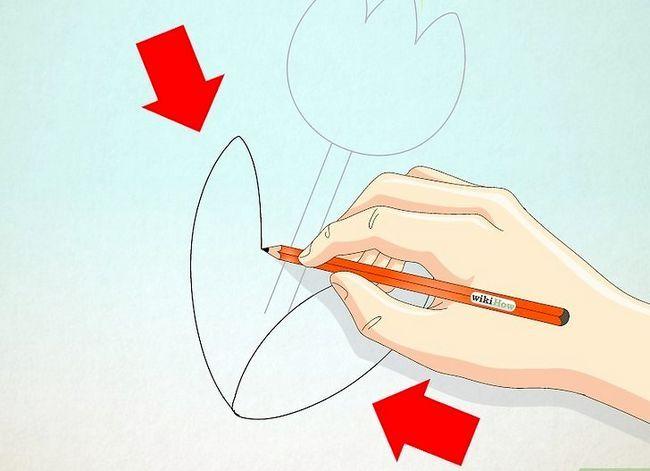 Titel afbeelding Draw a Tulip Step 7