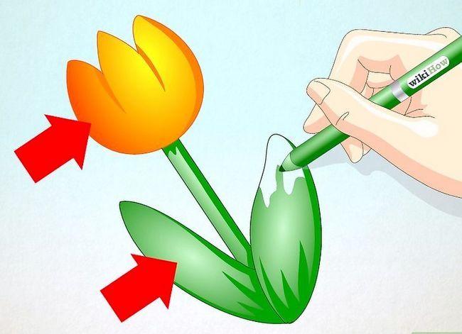 Titel afbeelding Draw a Tulip Step 8