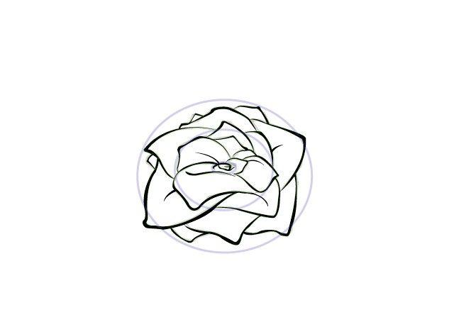 Titel afbeelding Draw Flowers Step 4