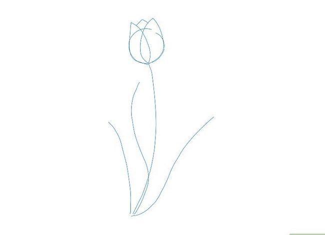 Titel afbeelding Draw a Flower Step 11