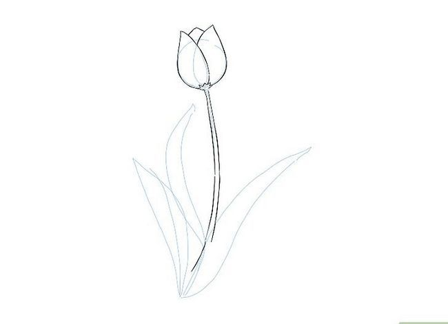 Titel afbeelding Draw a Flower Step 13