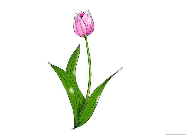 Titel afbeelding Draw a Flower Step 16