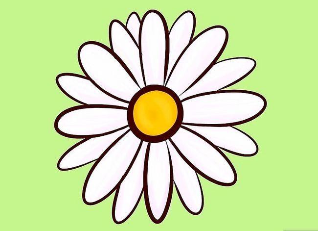 Titel afbeelding Draw Flowers Step 9