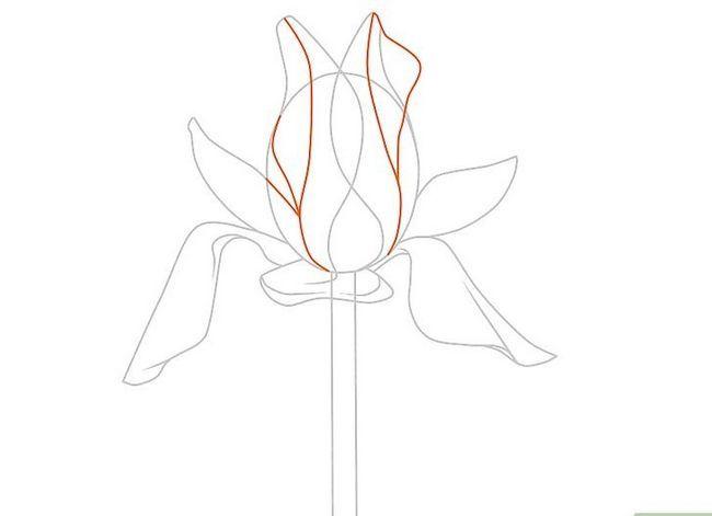 Titel afbeelding Draw Flowers Step 34