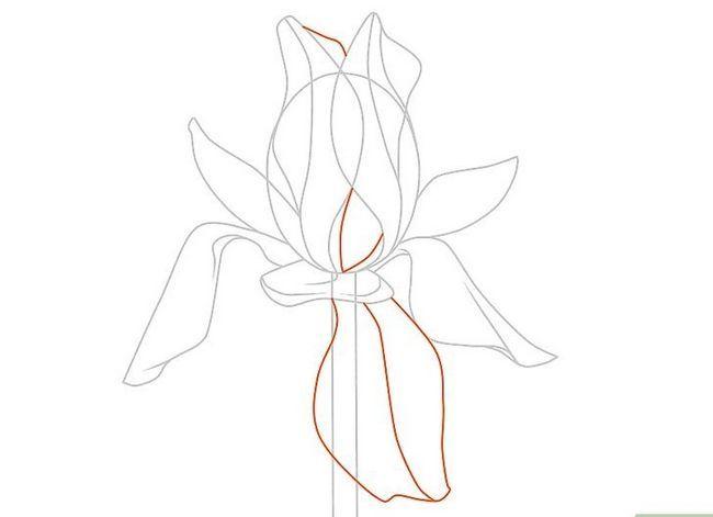Titel afbeelding Draw Flowers Step 35
